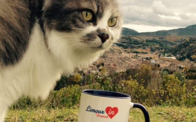 Le Mug Limoux'in