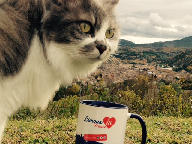 Mug Limoux'in